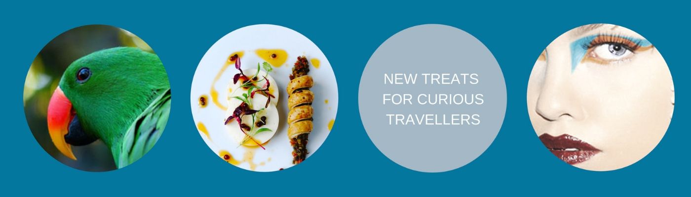 New Treats for Curious Travellers Blog