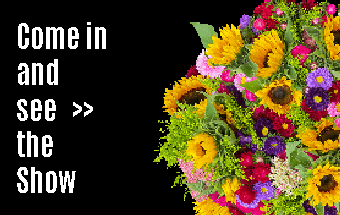 ECT virtual International Flower Show - come in and see the show!