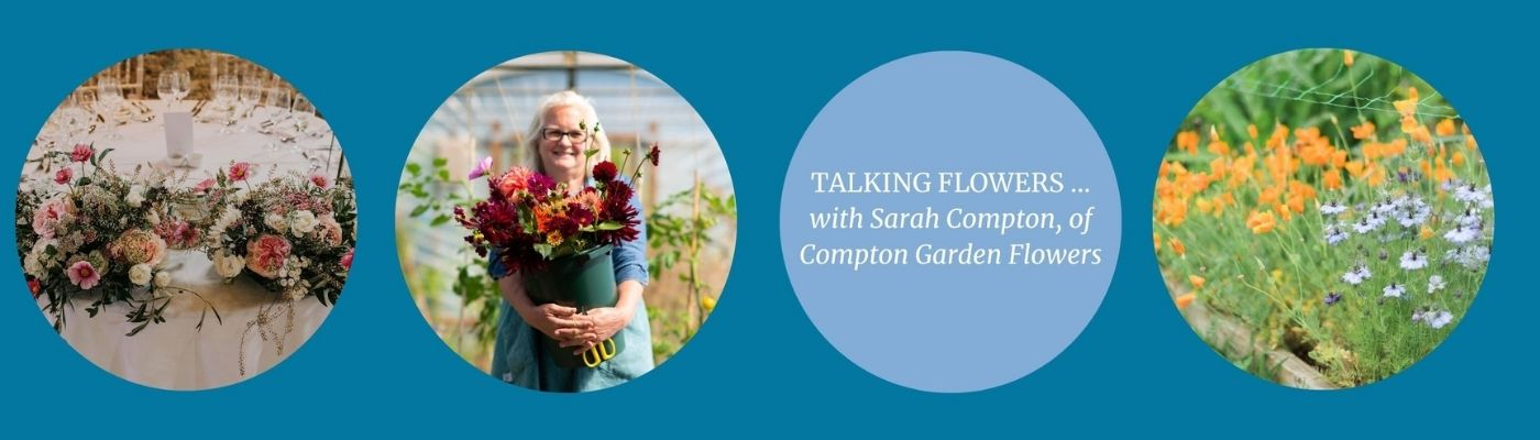 Talking Flowers with Sarah Wilson