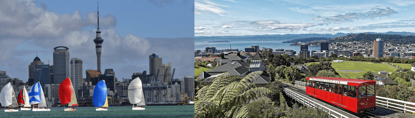 Experience the cities Auckland and Wellington in New Zealand