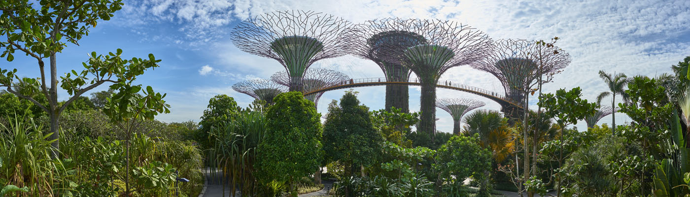 Gardens by the Bay - Singapore Garden Festival 2020