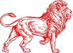 The Barbary Lion