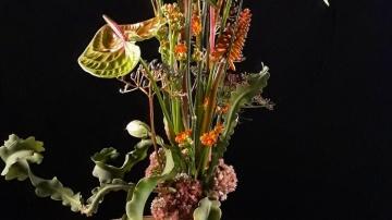 Fleur Creatif Tino Hoogterp