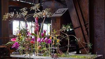 Tino Hoogterp Designer fleur creatif