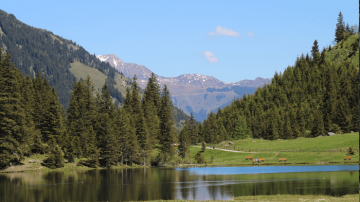 Tyrol Austria 2022 All Escorted tour to Austria.png